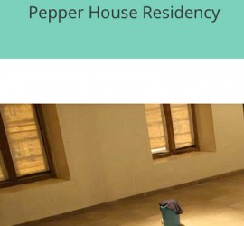 PepperHouseRes_feature