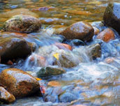 river-and-stones_feature