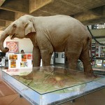 elephant-in-the-room-auroville-town-hall