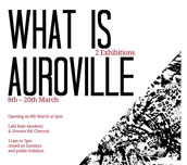 Exhibitons and events of the Auroville Festival this week