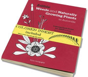 """book launch """"Edible Weeds and Naturally Growing Plants in Auroville"""""""