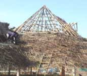 Traditional Bamboo Thatch House Building